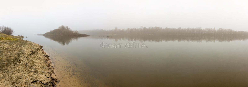 在森林湖的雾在早期的春天 库存照片