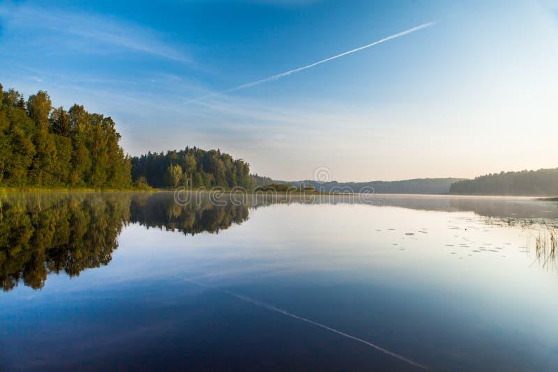 在森林湖破晓在蓝天下 免版税库存图片