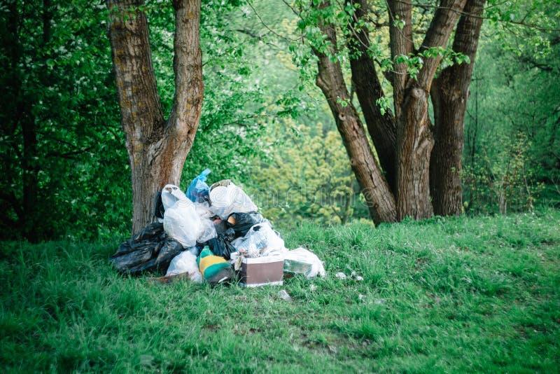 在森林环境污染的疏散垃圾,社会问题 免版税库存图片