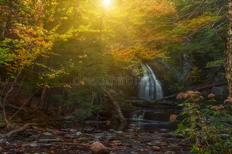 在森林美好的狂放的自然的瀑布 美国 缅因 库存图片