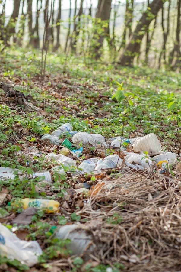 在森林被卷起的自然的塑料垃圾 在草的塑胶容器 库存图片