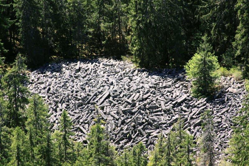 在森林里切细的玄武岩专栏 免版税库存照片