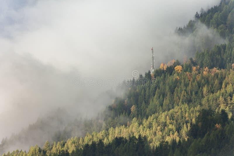 在森林里面的Telecomunications天线 库存图片