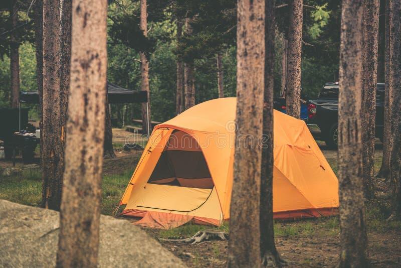 在森林野营的帐篷 图库摄影