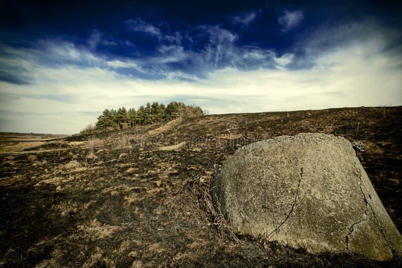 在森林附近的大石头 免版税库存照片