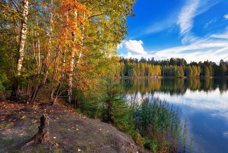 在森林附近的秋季湖 库存照片