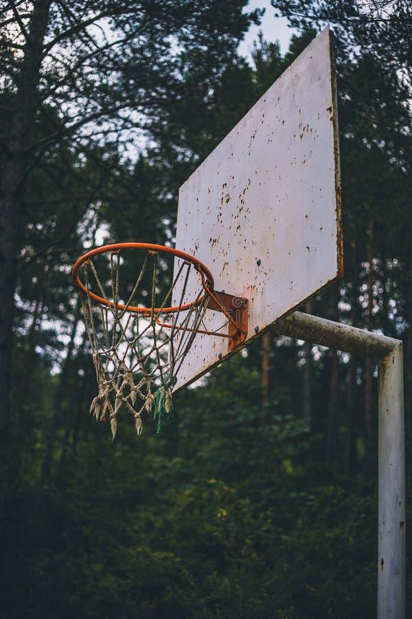 在森林领域低射击的老和生锈的篮球篮子 免版税库存图片