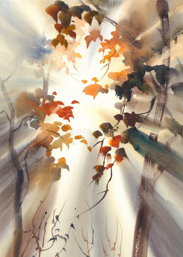 在森林水彩的太阳光芒 皇族释放例证