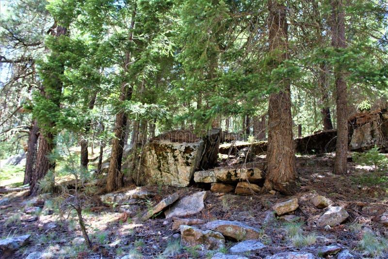 在森林Canyon湖,可可尼诺县,亚利桑那,美国的岩层 图库摄影
