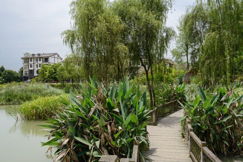 在植物和树的木人行桥对太阳的湖边村庄 库存照片