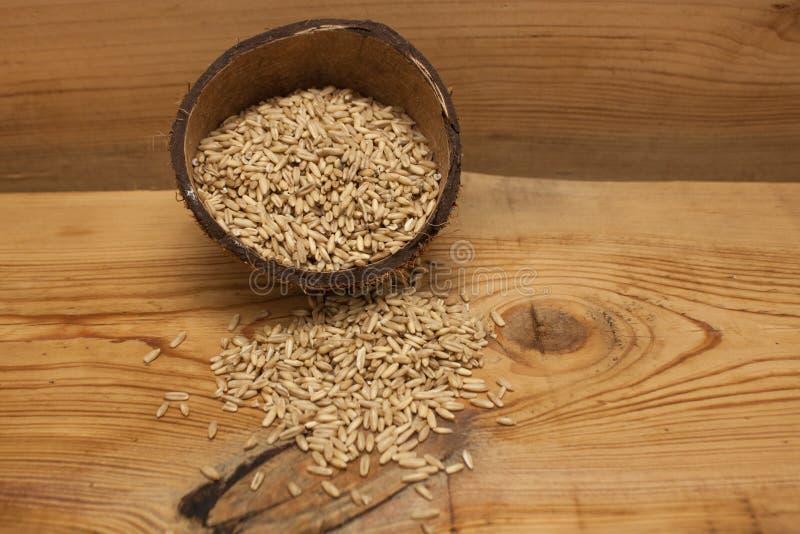 在椰子壳,成份的未加工的燕麦五谷在木背景的可口健康早餐,拷贝空间 免版税库存照片