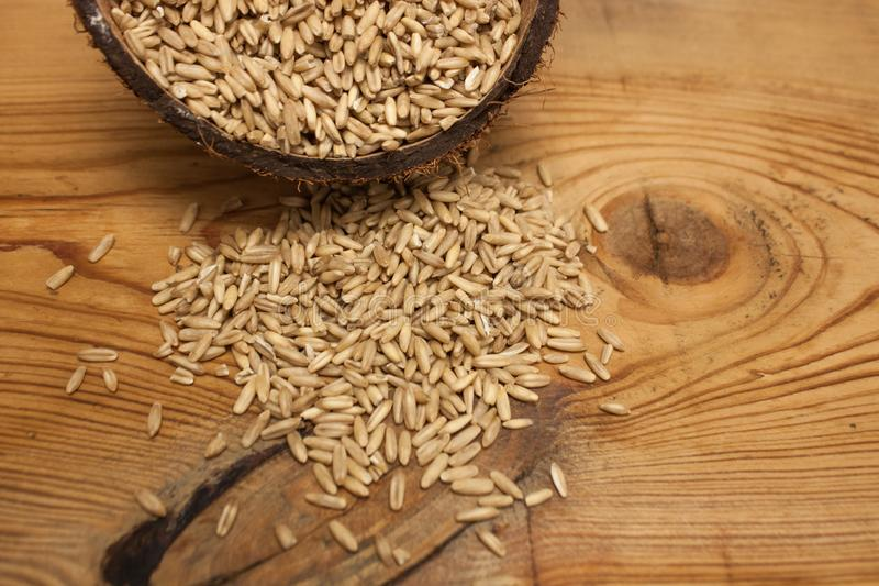 在椰子壳,成份的未加工的燕麦五谷在木背景的可口健康早餐,拷贝空间 图库摄影