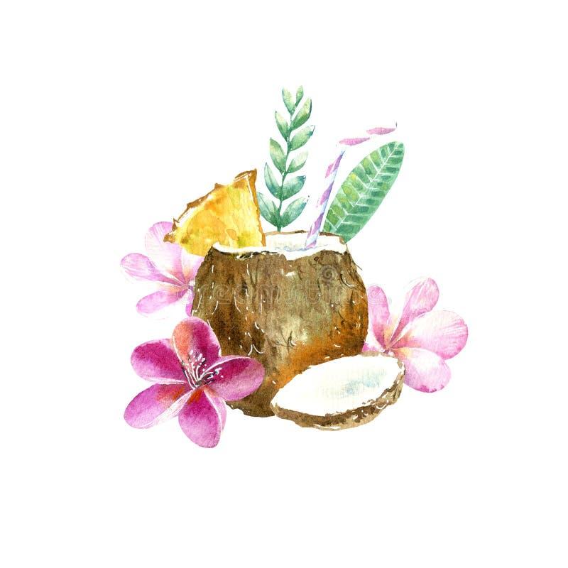 在椰子的鸡尾酒 羽毛花和花卉 热带水果剪影 库存例证