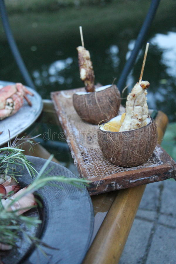 在椰子的鸡 图库摄影