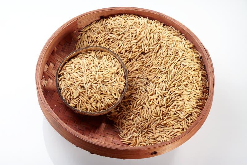 在椰子&盘子的稻 免版税图库摄影