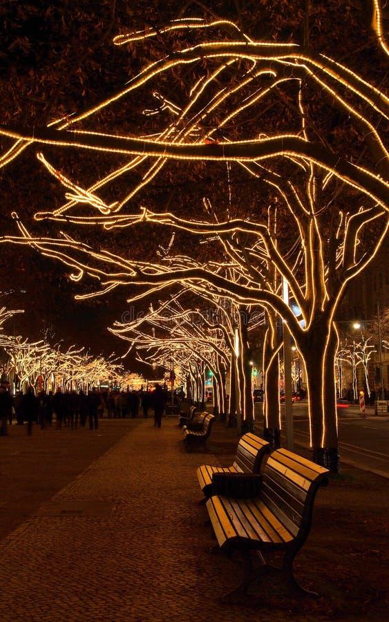 在椴树圣诞节之下的柏林 库存照片