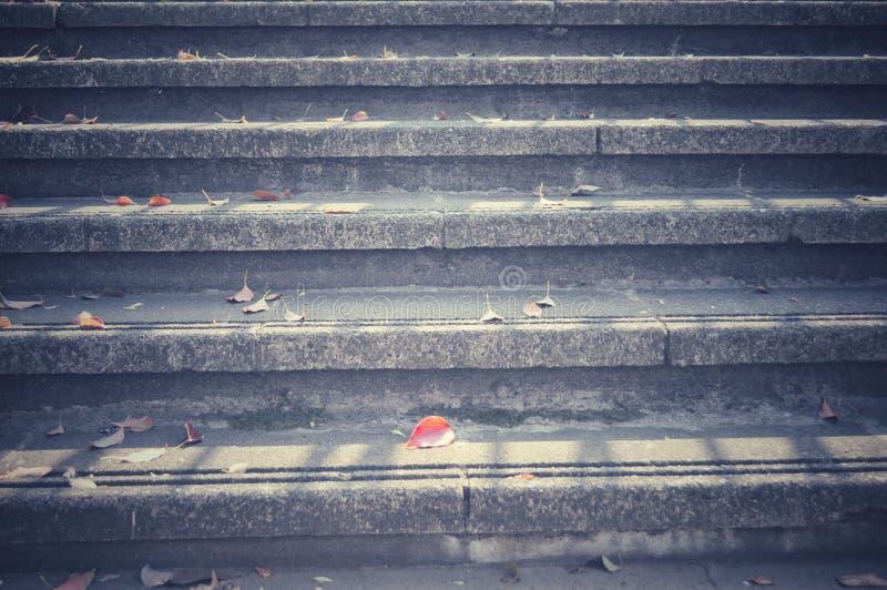 在楼梯下落的秋叶 免版税图库摄影