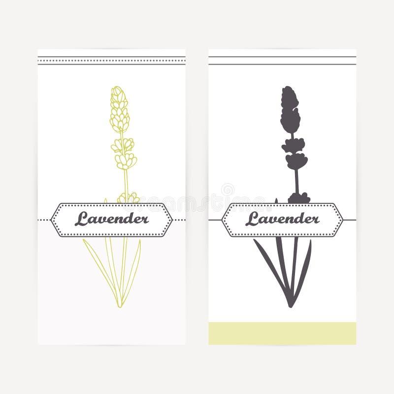 在概述和剪影样式的手拉的淡紫色 辣草本 向量例证