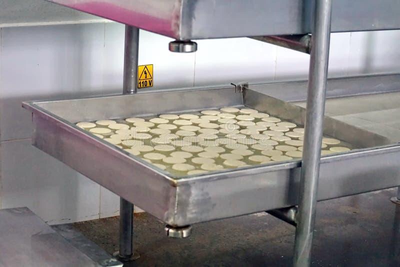在模子的乳酪在乳酪厂 免版税库存图片