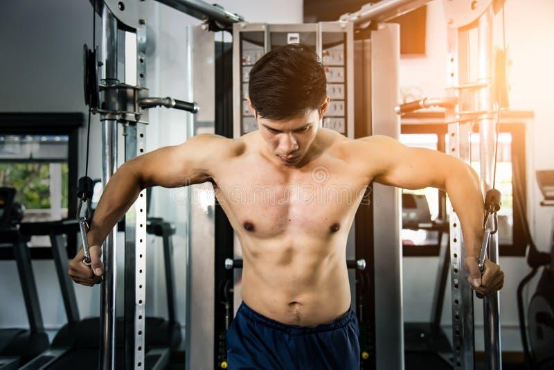 在模拟器在健身房,强的男性的运动员肌肉爱好健美者训练 库存图片