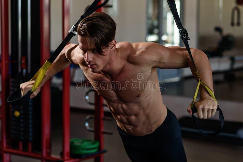 在模拟器的运动员肌肉爱好健美者训练在健身房 库存图片