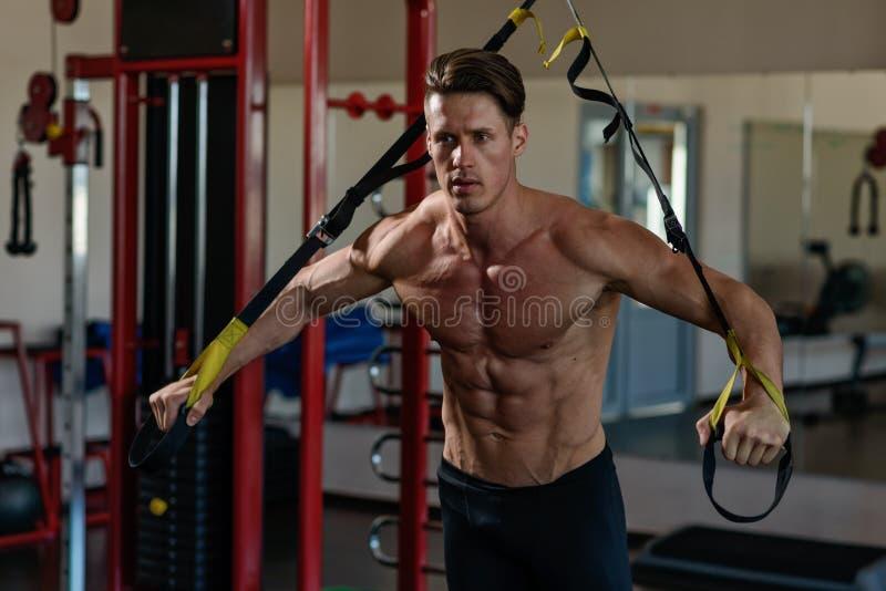 在模拟器的运动员肌肉爱好健美者训练在健身房 库存照片