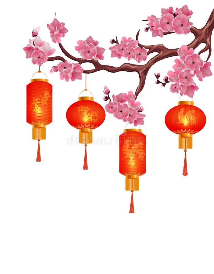 在樱桃分支的四个红色中国灯笼与桃红色花的 皇族释放例证