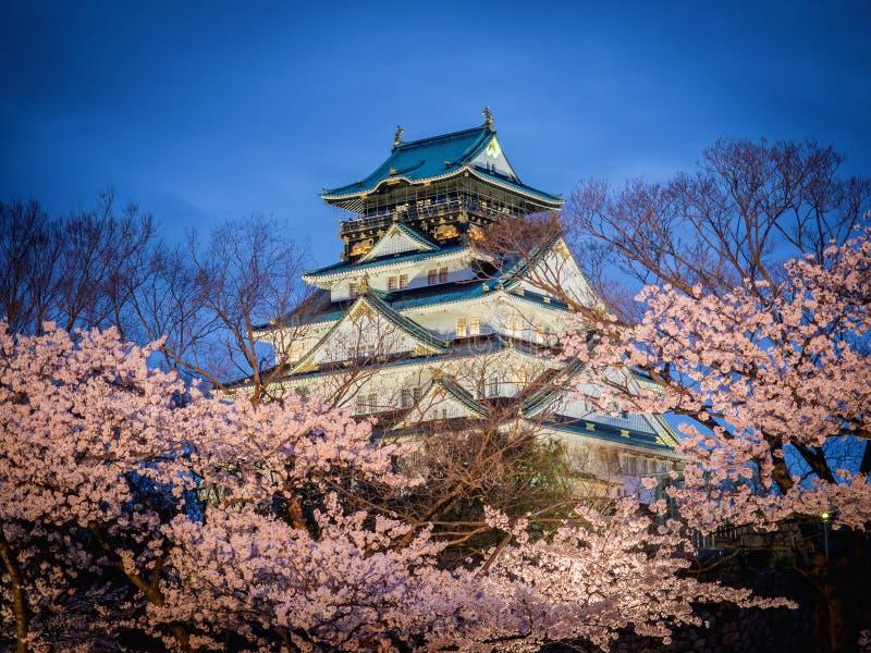 在樱花树(佐仓)中的大阪城堡在晚上场面 图库摄影
