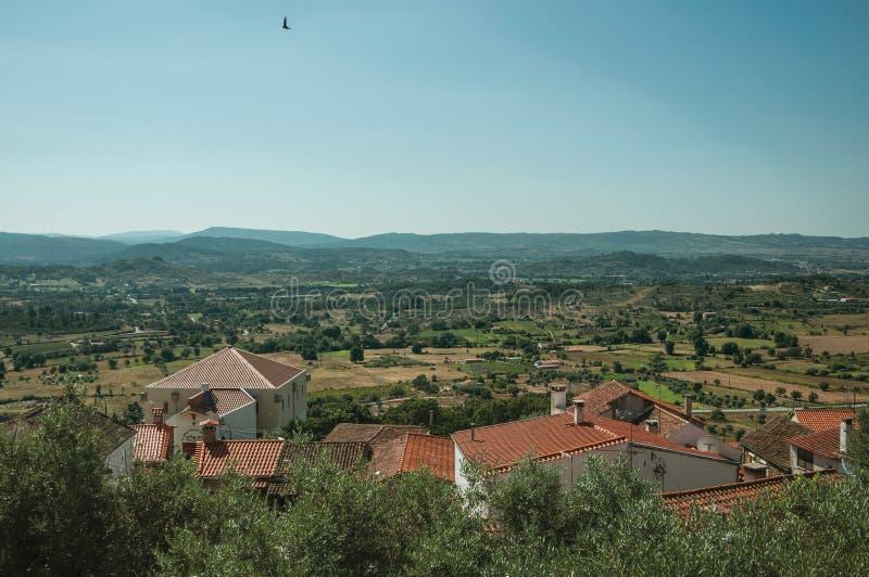 在橄榄树中的屋顶在乡下风景 免版税库存照片