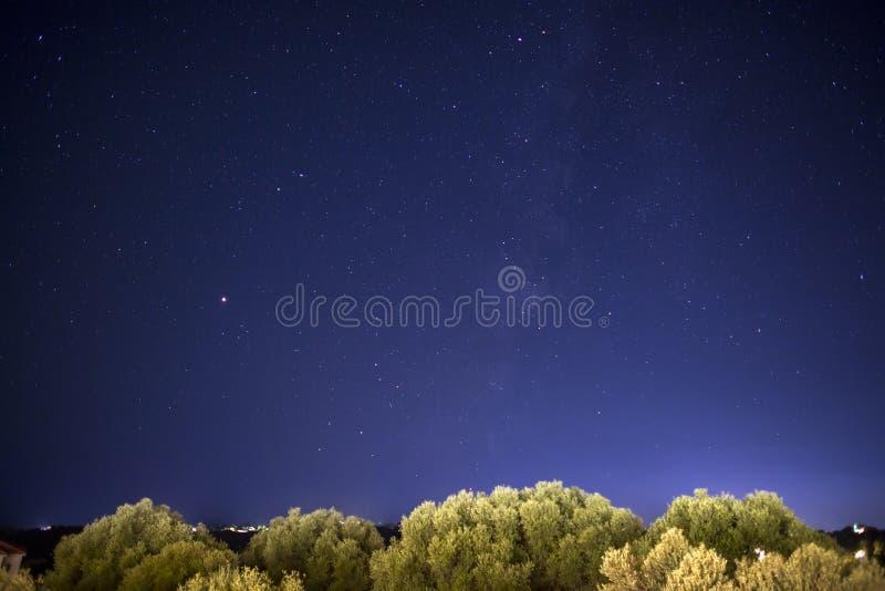 在橄榄树的夜空星在Kefalonia海岛,希腊 免版税图库摄影
