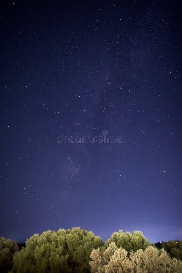 在橄榄树的夜空星在Kefalonia海岛,希腊 免版税库存图片
