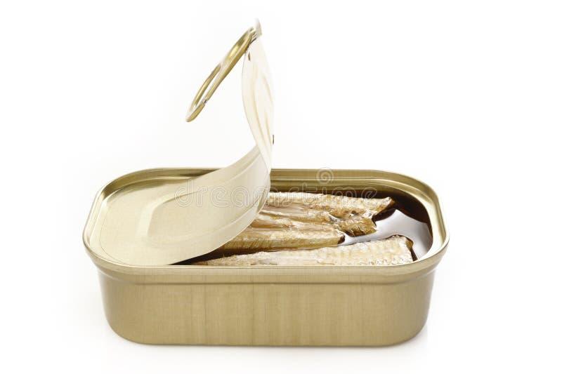 在橄榄油的沙丁鱼在白色 库存图片
