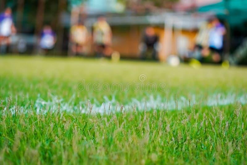 在橄榄球场的草 免版税库存图片