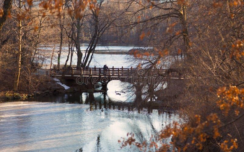 在橡木桥梁,银行岩石海湾,中央公园,纽约的美好的秋天颜色 免版税库存照片
