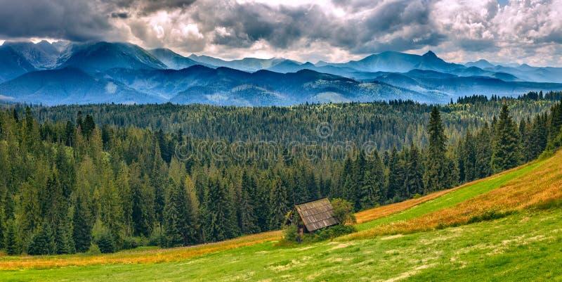 在欧洲山的全景风景,高Tatras,Malopolskie波兰 免版税库存照片