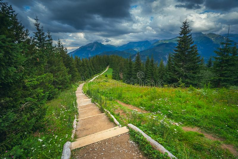 在欧洲山的风景,高Tatras,Malopolskie波兰 图库摄影