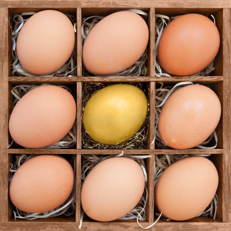 在正常鸡蛋中的金黄鸡蛋在木箱 免版税图库摄影