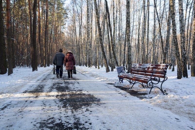 在步行的年长夫妇在冬天公园 免版税图库摄影