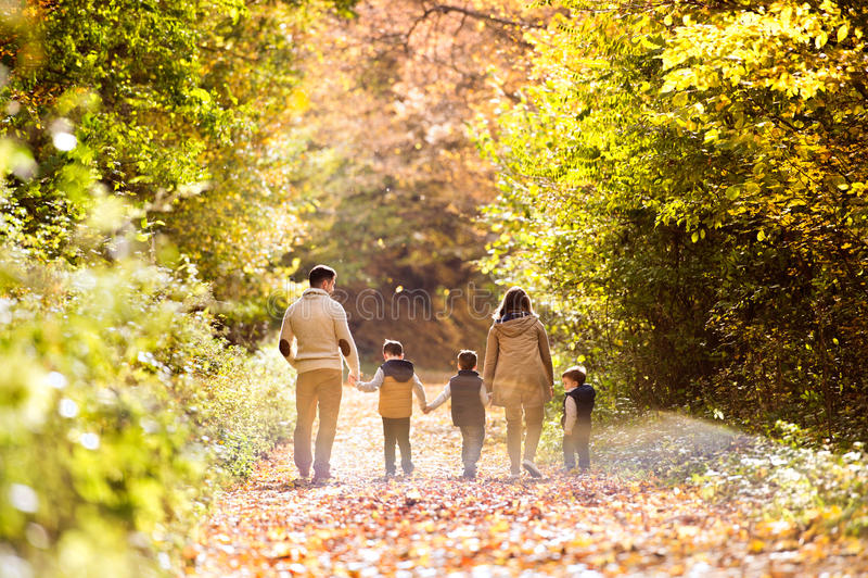 在步行的美丽的年轻家庭在秋天森林里 免版税库存照片