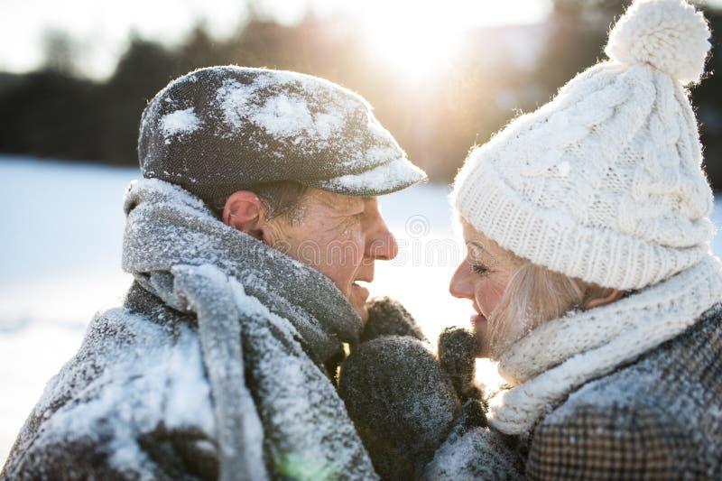 在步行的美好的资深夫妇在晴朗的冬天自然 免版税图库摄影