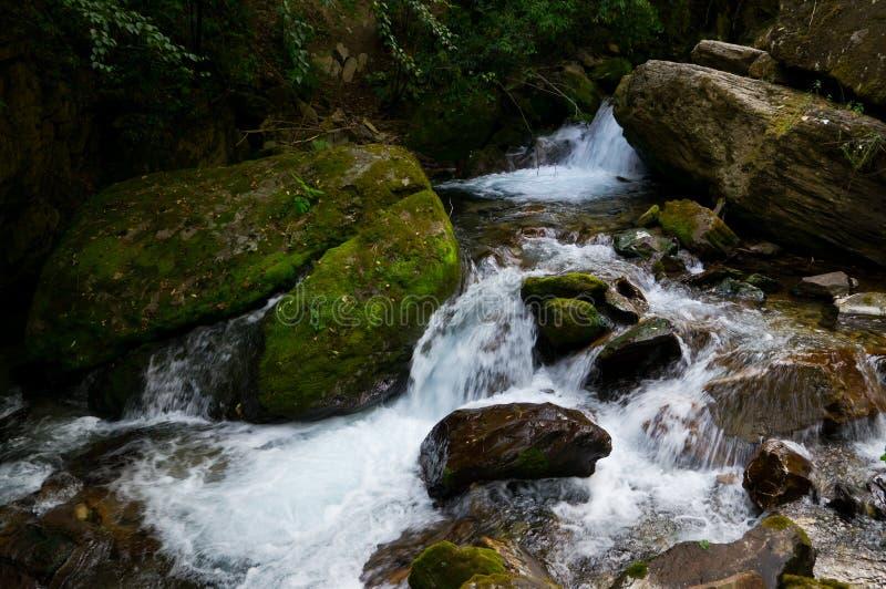 在武当山的一条小河 免版税图库摄影