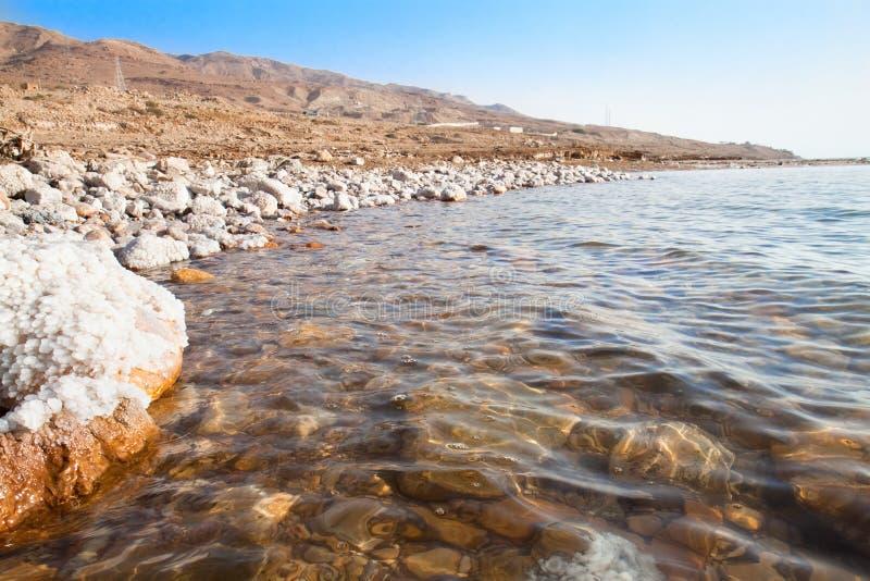 在死海的海岸的天然盐 库存照片