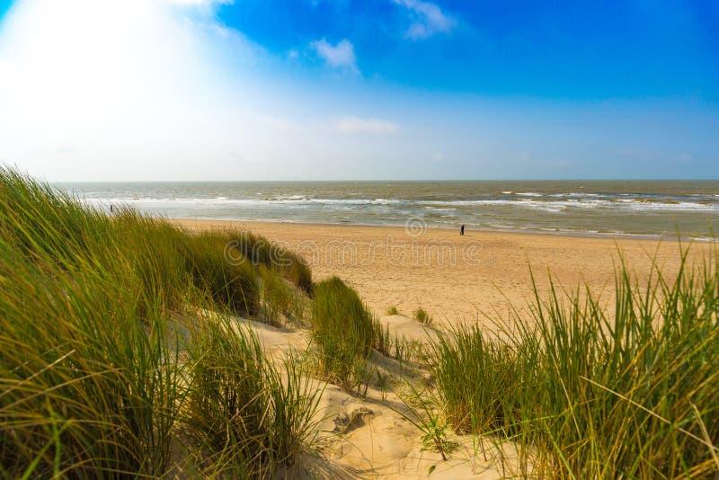 在比利时北海的沙丘沿岸航行反对触毛和层云和芦苇草 免版税库存照片