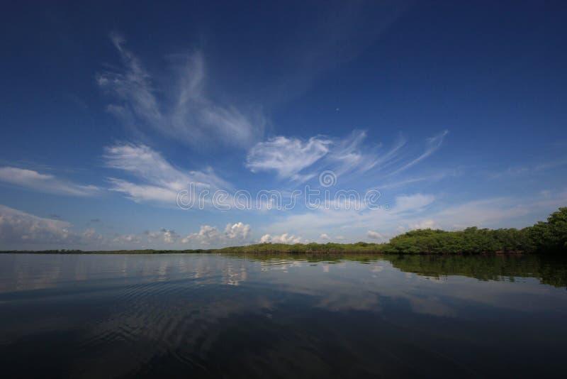 在比斯坎国家公园,佛罗里达的剧烈的cloudscape 库存照片