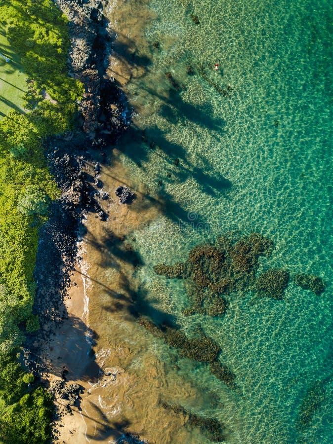 在毛伊海岸线的看法的下上面与长的棕榈树阴影的 库存图片