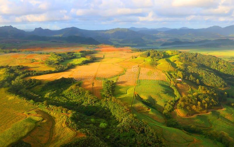 在毛里求斯海岛上的农村风景 库存图片