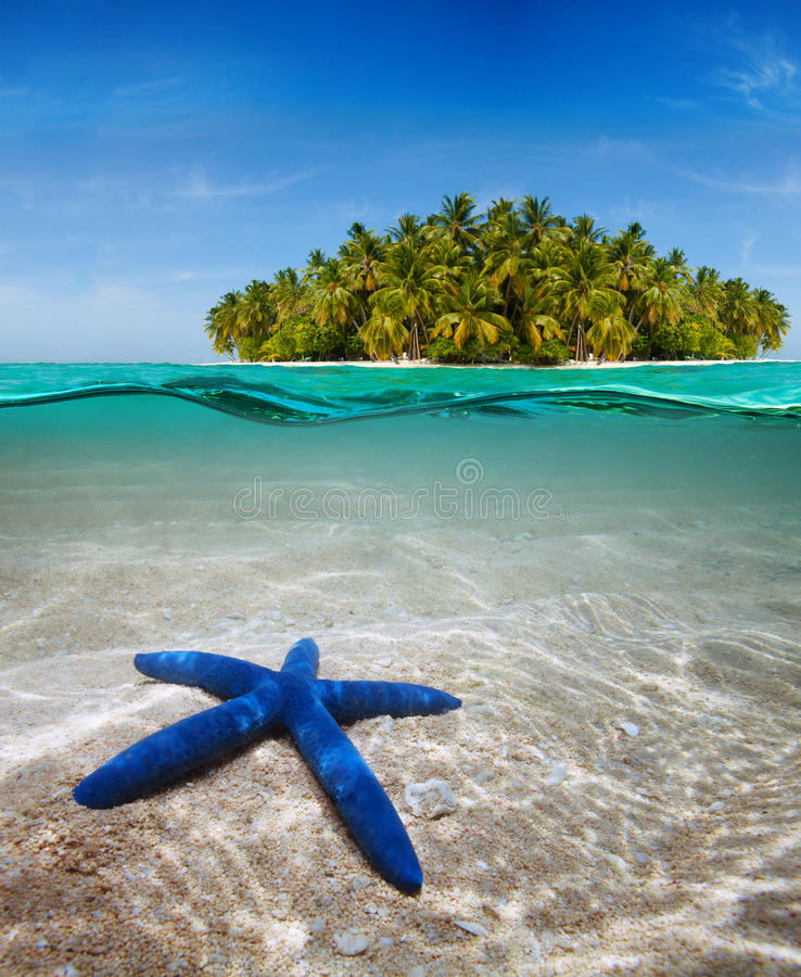 在水中附近的美好的海岛寿命 库存照片