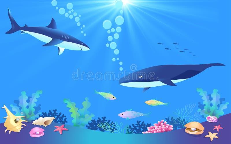 在水之下的鱼 图库摄影