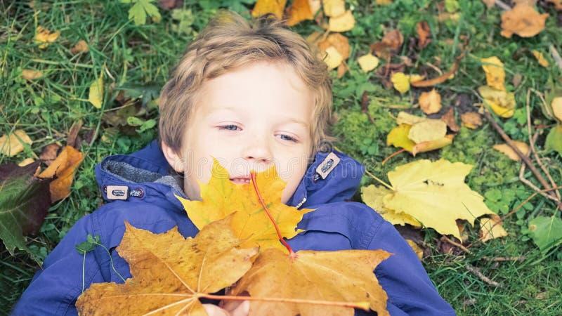 在水兵的秋叶的小孩男孩 愉快的孩子获得乐趣在秋天公园在温暖的天 男孩逗人喜爱的学校 库存照片