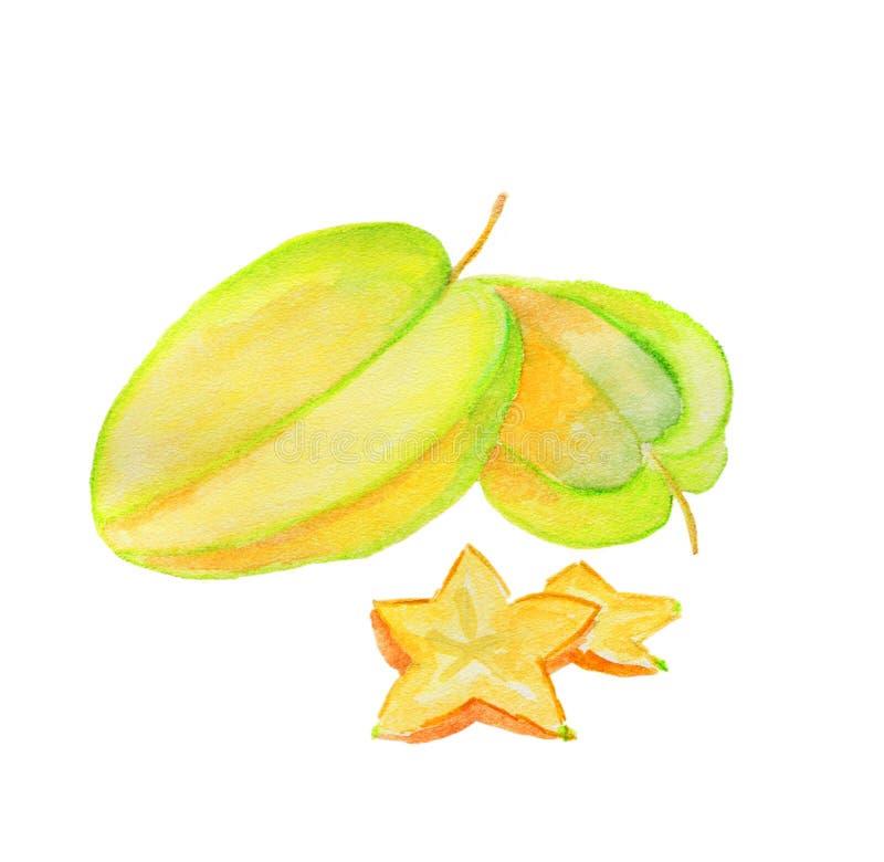 在水彩绘的新鲜水果 图库摄影
